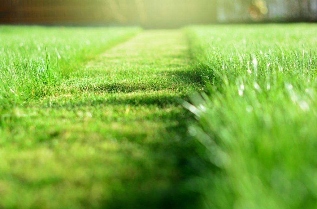 Landscaping company Fort Wayne