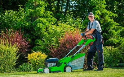 Hiring A Lawn Maintenance Expert And Its Benefits