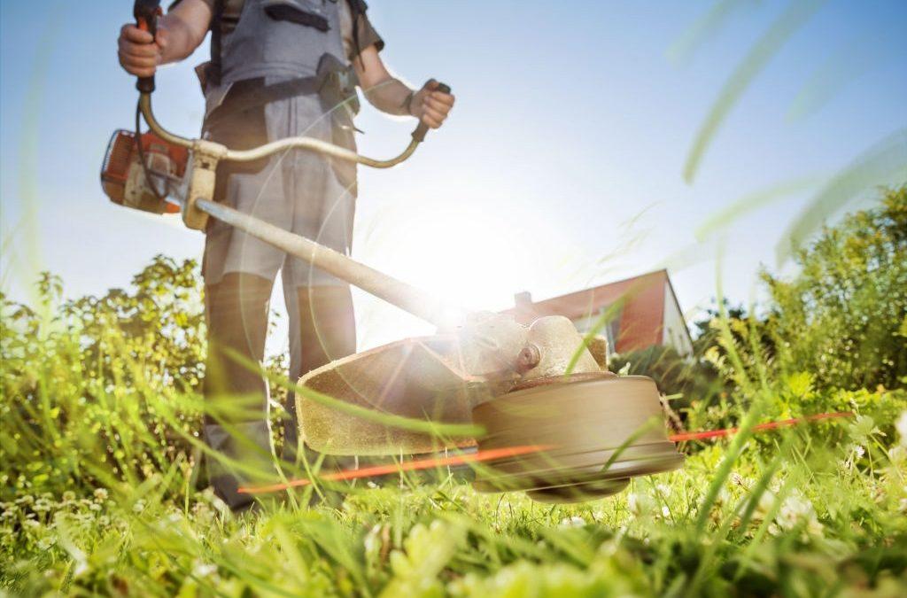 Free Lawn Care Estimate