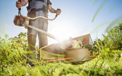 Safety Checks Before Lawn Mowing