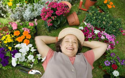 How to Keep Your Lawn Green with Overseeding
