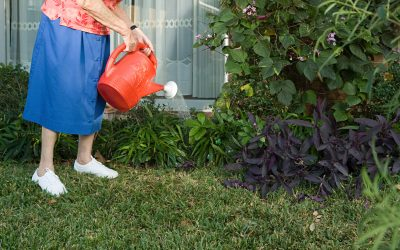 Crabgrass Prevention Should Be a Part of Yearly Fort Wayne Lawn Care